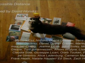 David Horvitz (part 4 of 5) - The Influencers 2014