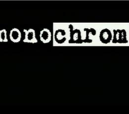 Monochrom - The Influencers 2008 (1)